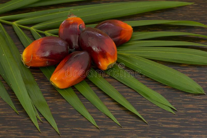 Close up of Palm Oil fruits with cooking oil and palm leaf on a wooden background stock images