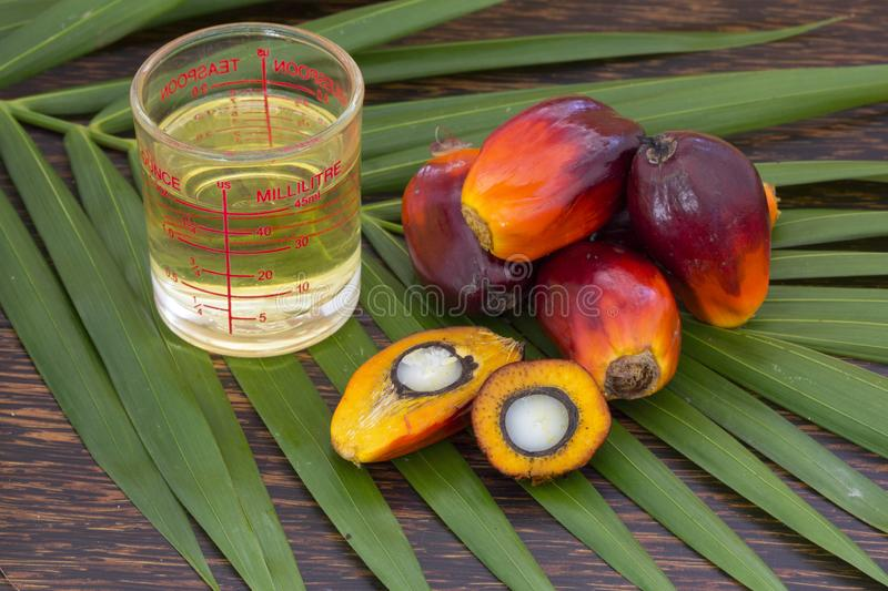 Close up of Palm Oil fruits with cooking oil and palm leaf on a wooden background royalty free stock photos