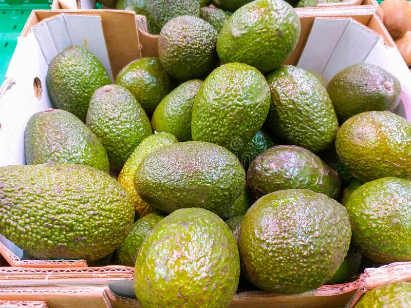 A paperboard box at the market plenty of tasty brilliant green avocados just harvested ready to be sold to customers. Close up of a paperboard box at the market royalty free stock image