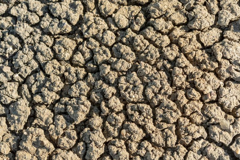 Close Up of Parched Earth. On badlands ground royalty free stock image