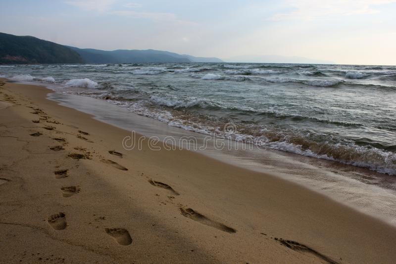 Close-up path of family footprints on sandy beach stock image