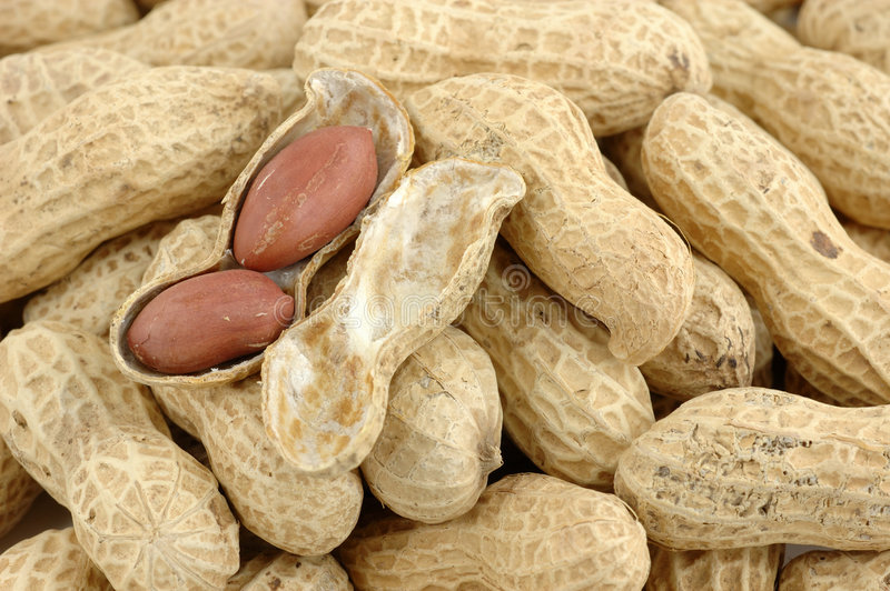 Close up of peanuts royalty free stock image
