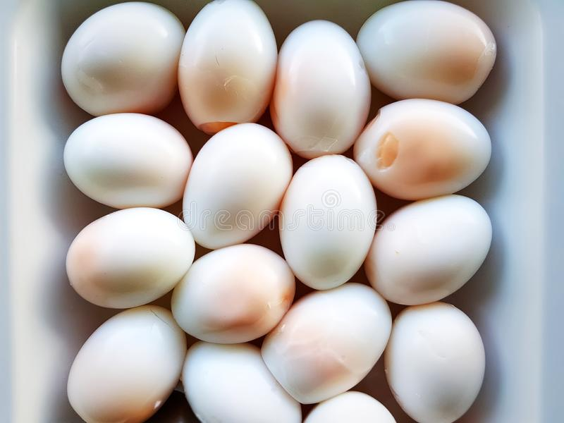 Close-up Peeled Boiled Eggs in White Bowl royalty free stock photography