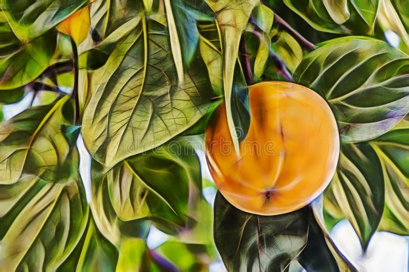 Close up persimmon fruit and green leaves stock illustration