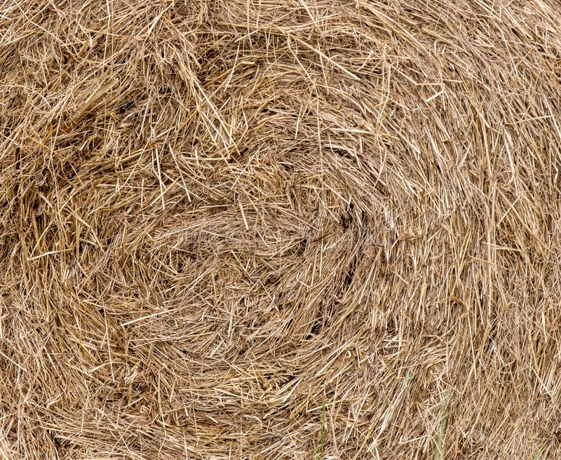 A close up photo of a bale of hay royalty free stock images