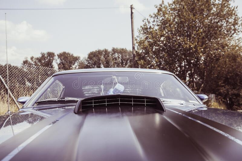 Close Up Photo of Black Car royalty free stock images