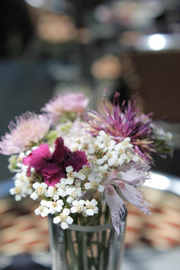 Close-up Photo of Bouquet royalty free stock photography