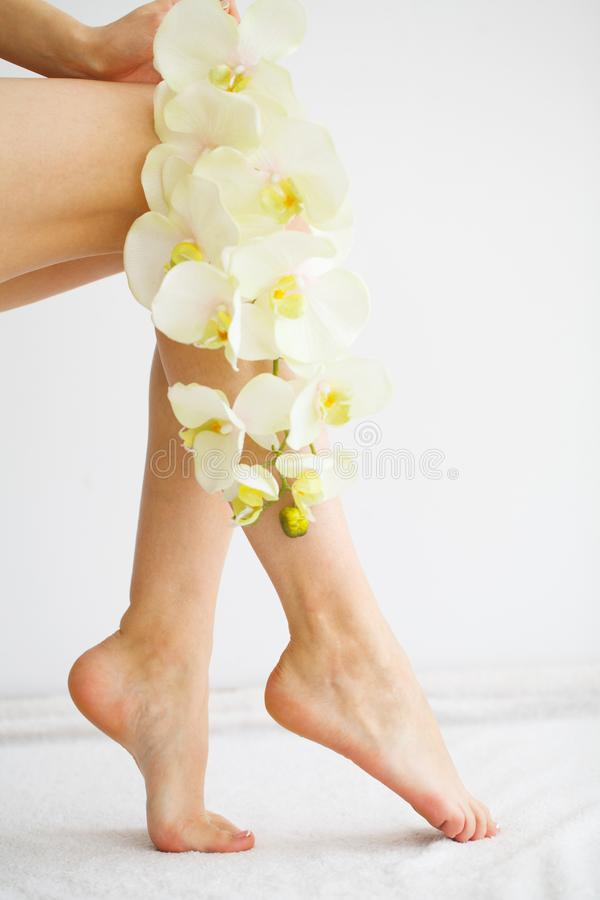 Close Up photo of a female feet at spa salon on pedicure procedure stock photography