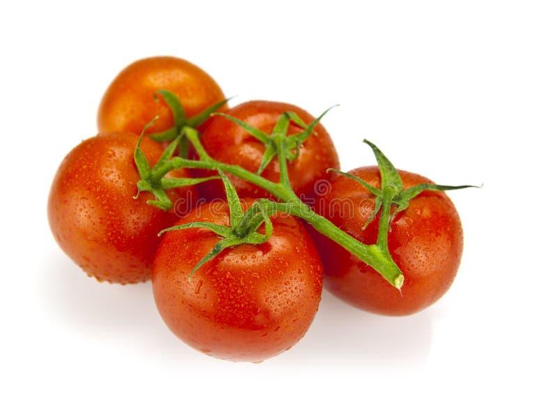 Close-up photo of fresh organic tomatoes stock photography
