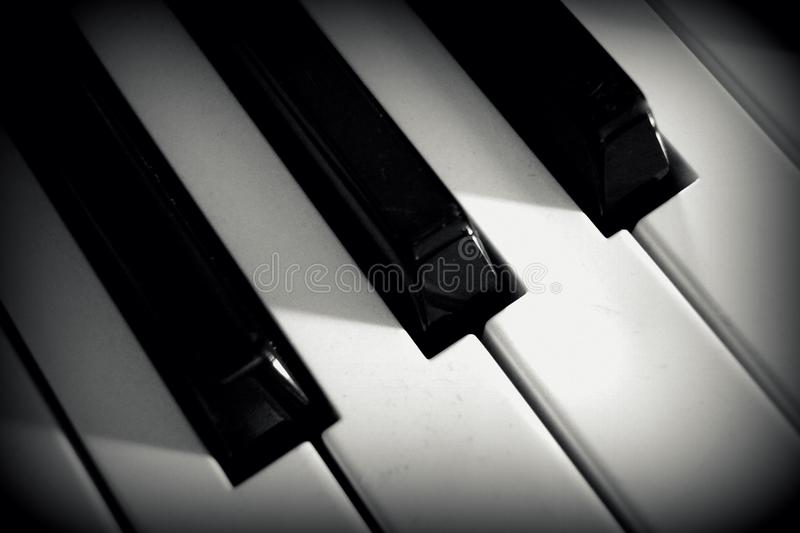 Close Up Photo of Piano Keys stock images