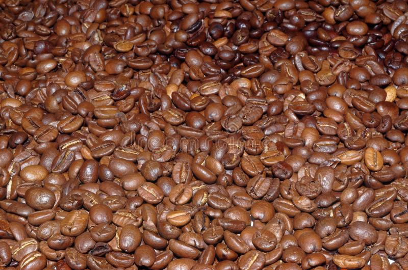 Roasted coffee beans as a background. Close up photo of roasted coffee beans as a background stock images