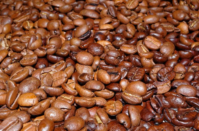 Roasted coffee beans laid out as a background. Close up photo of roasted coffee beans laying as a background royalty free stock image