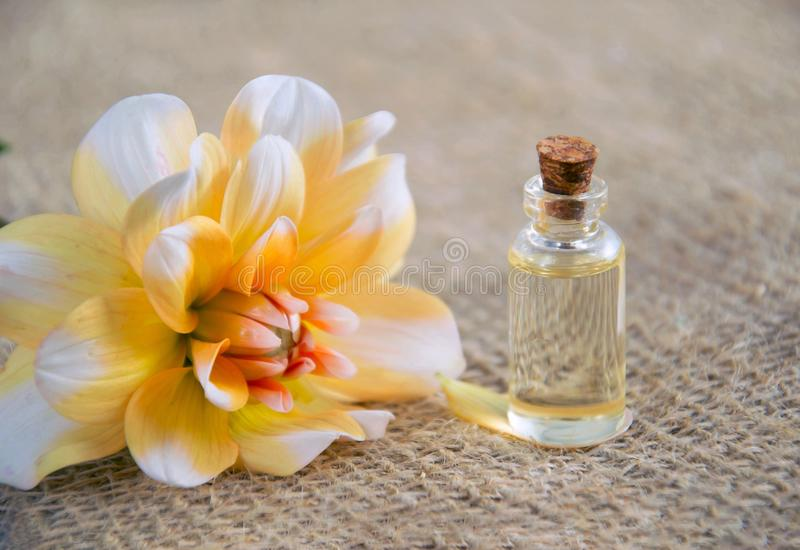 Close-Up Photo of White and Yellow Flower Near Glass Bottle royalty free stock image