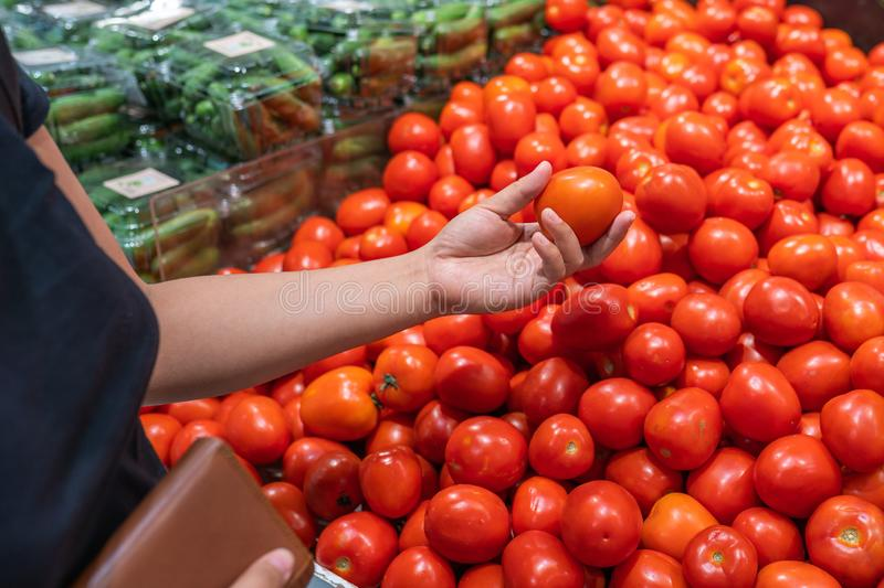Close up photo of woman hand picking tomato at grocery store. Close up photo of woman hand buying tomato at grocery store royalty free stock photo