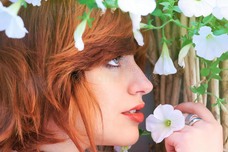 Close-up Photo Of Woman Holding White Petaled Flower royalty free stock photo