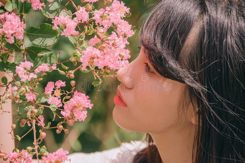 Close-Up Photography of Girl Near Pink Flower royalty free stock image