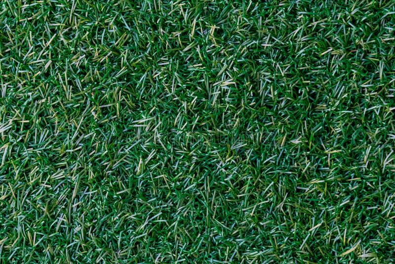 Close up photography of green grass. A close up photography of green grass ground outdoor during daytime royalty free stock photos