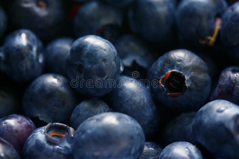 Close Up Photography of Grey Round Fruits stock photo