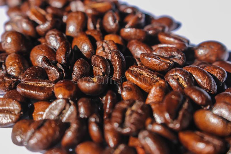 Close-up Photography of Roasted Coffee Beans stock photography