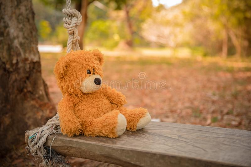 Close-Up Photography of Teddy Bear on Wooden Swing royalty free stock photo