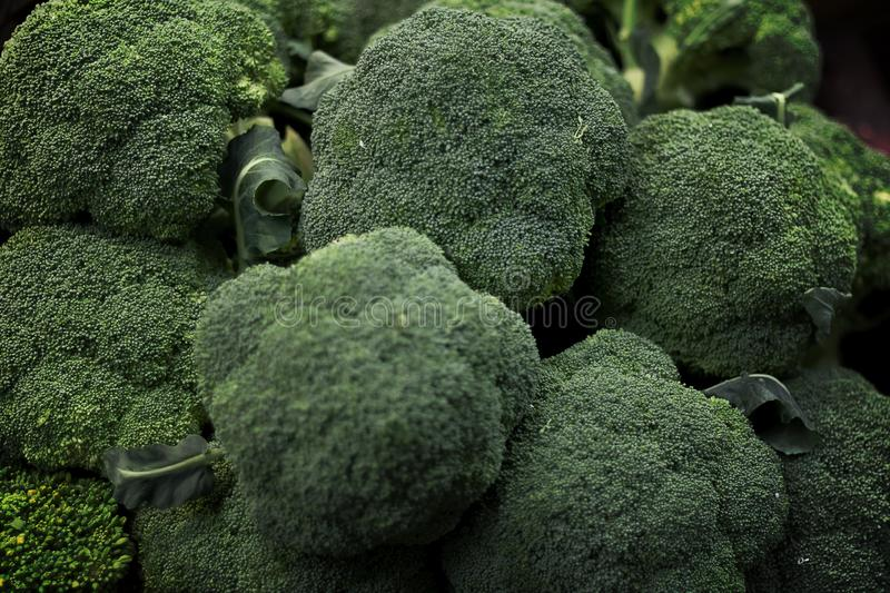 Close-up photos of many fresh broccoli groups. Background market nature green color food white healthy natural plant freshness organic diet nutrition stock photo