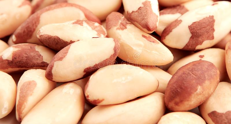 Close up picture of Brazil nuts royalty free stock photos
