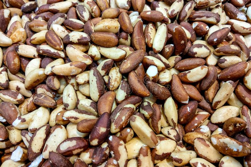 Close up picture of Brazil nuts, food background stock photo