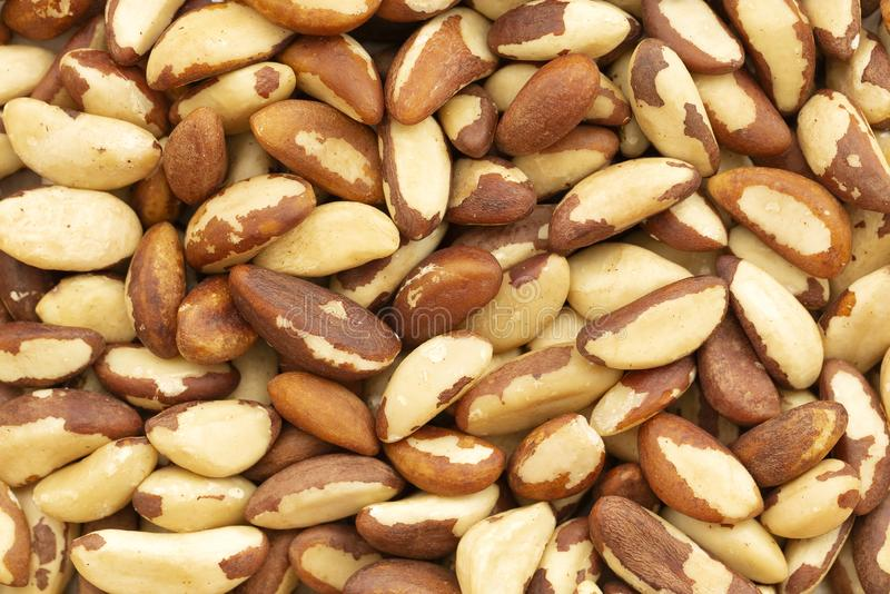 Close up picture of Brazil nuts, organic food. Brazil nuts background. stock photos