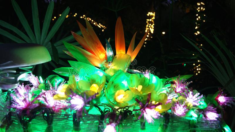 Close up picture of a flower of paradise made with fairy christmas lights shining at night in a garden. Close up picture of a flower of paradise made with fairy royalty free stock images