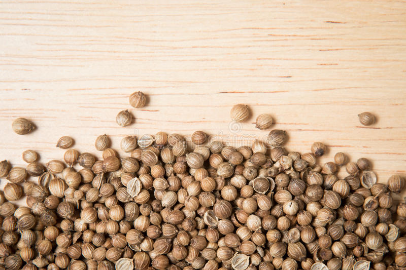Close up pile of dried coriander seed royalty free stock photography