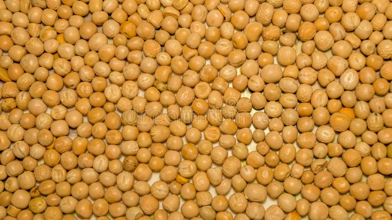 Close up pile of yellow gram flour beans texture, background pattern. Natural grains and cereals. Agricultural product concept. stock photography