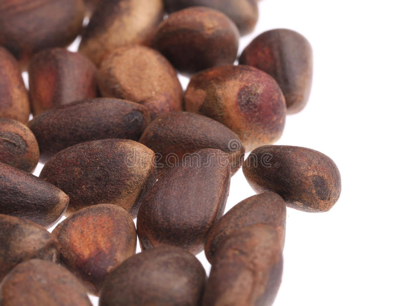 Close up of pine nuts bunch. stock photos