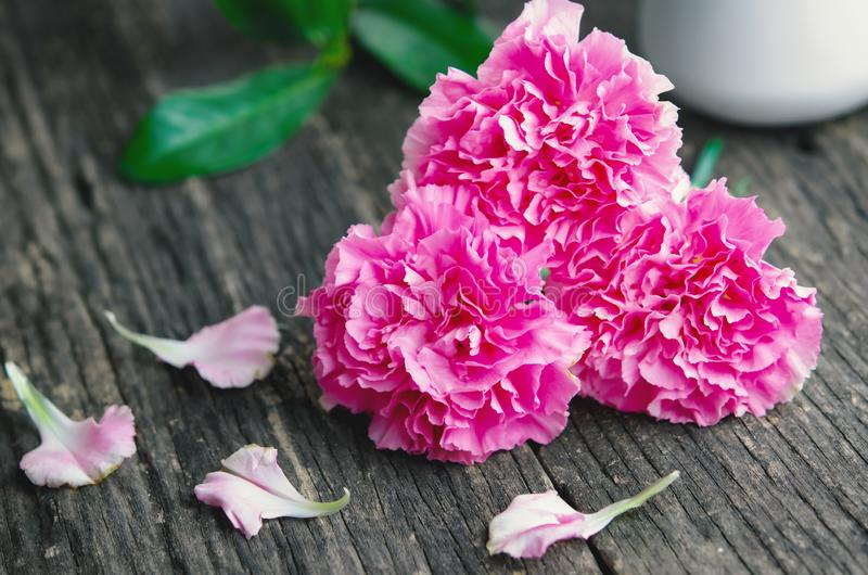 Close up of pink carnation flowers on wooden table with vintage. Tone stock images