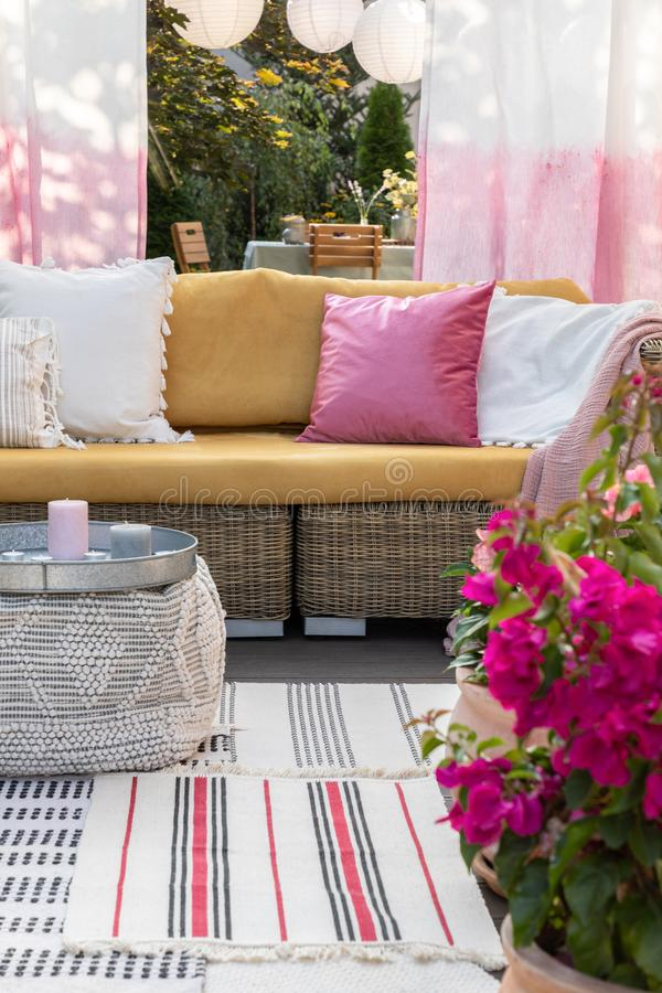 Close-up of flowers on a terrace with a wicker sofa and pillows in the background. Real photo royalty free stock images