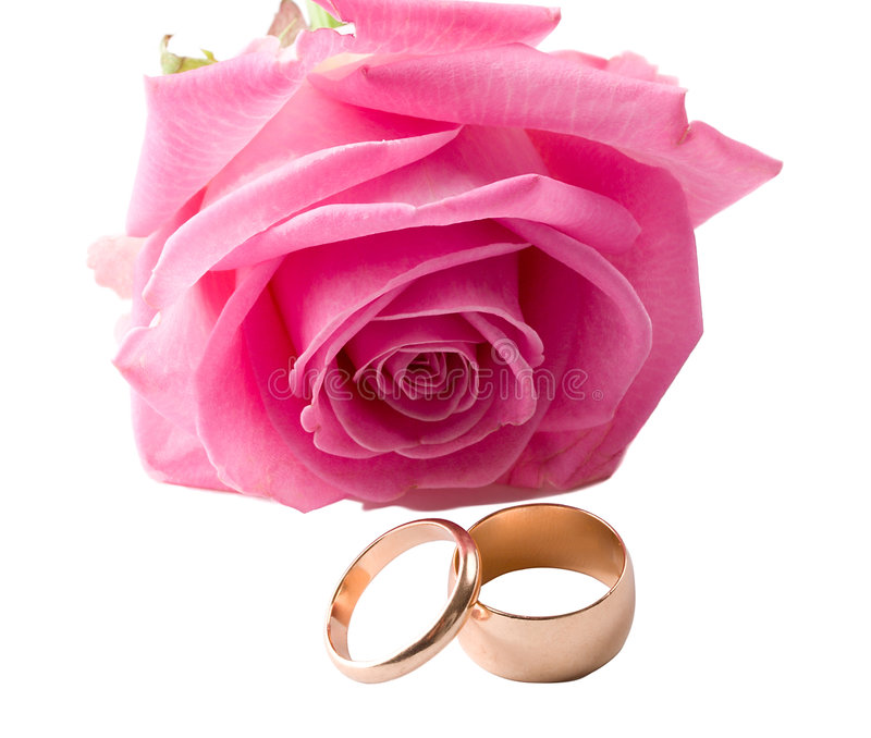 Close-up Pink Rose And Two Wedding Rings Stock Photo