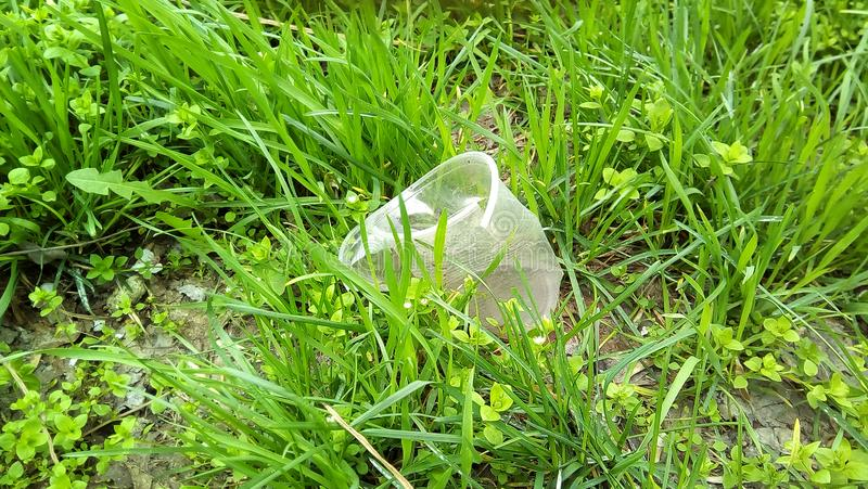 Close-up with a plastic cup in the green grass. stock photography