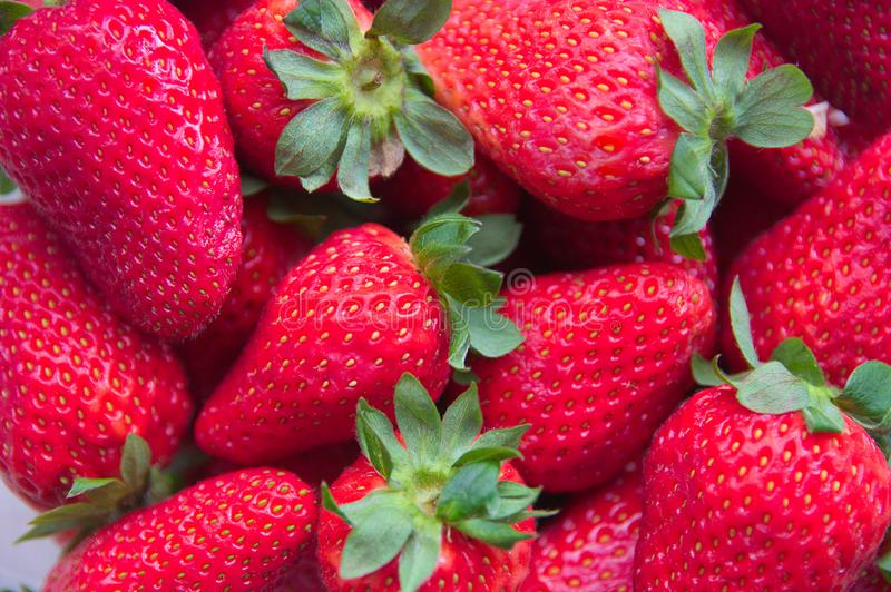 Close-up of a plate full of ripe strawberries royalty free stock photography