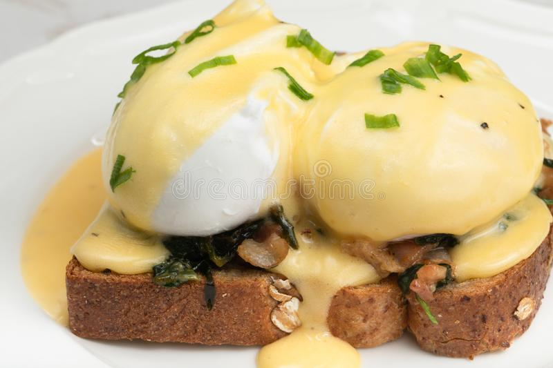 Eggs Benedict for brunch royalty free stock image