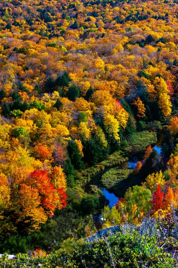 Close-Up of the Porcupine Mountains on a fall day royalty free stock photography