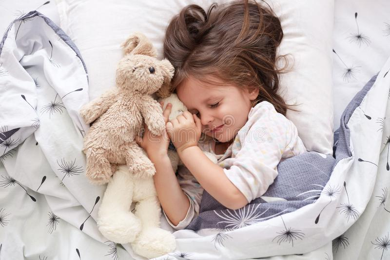 Close up portrait of adorable dark haired little girl calmly sleeping with sweet golden retriever pet in bedroom. Cute elementary royalty free stock images