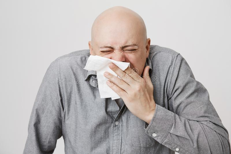 Close-up portrait of adult bald caucasian man sneezing in napkin and shrugging, standing with closed eyes over gray. Background. Guy has allergy on dust and royalty free stock images