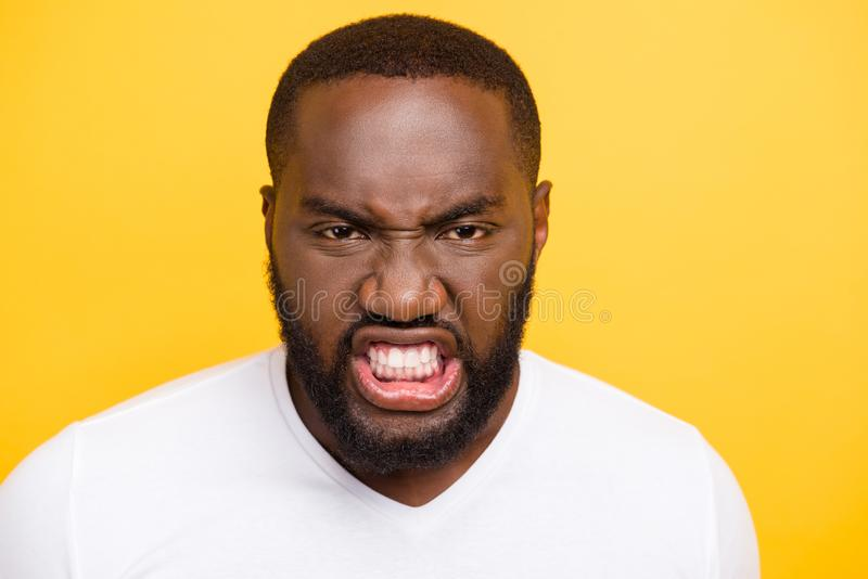 Close-up portrait of angry wild manly evil crazy mulato guy in w royalty free stock image