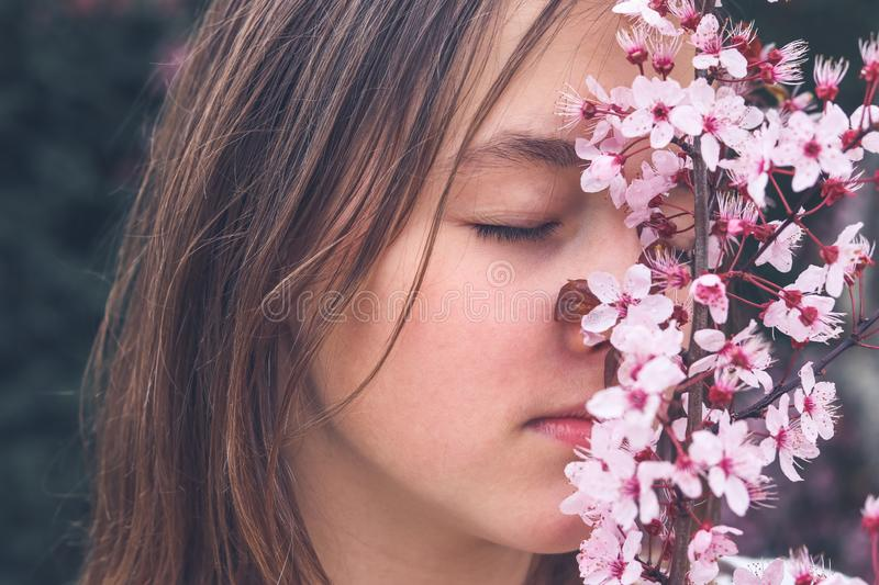 Close up portrait of attractive romantic teenage girl smelling aroma of blooming spring pink plum tree flowers with closed eyes. Close up portrait of attractive stock photography