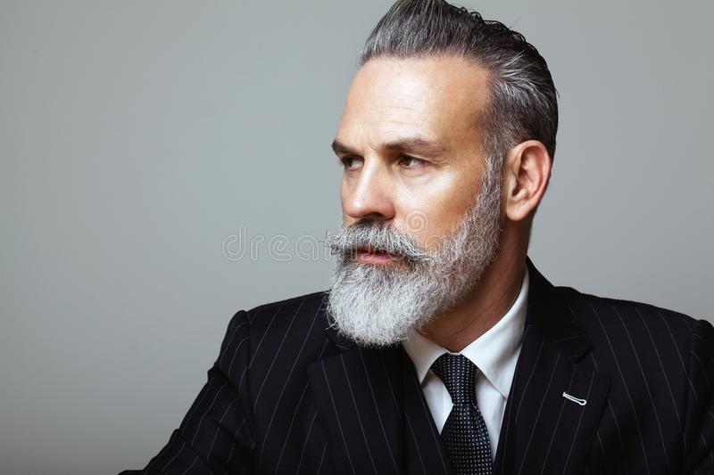Close-up portrait of bearded gentleman wearing trendy suit over empty gray background. Copy Paste space. royalty free stock photos