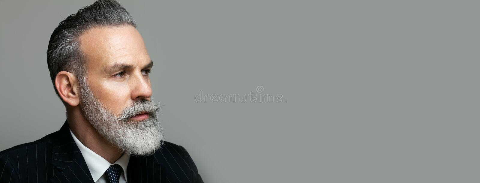 Close-up portrait of bearded gentleman wearing trendy suit over empty gray background. Copy Paste text space. Wide. royalty free stock images