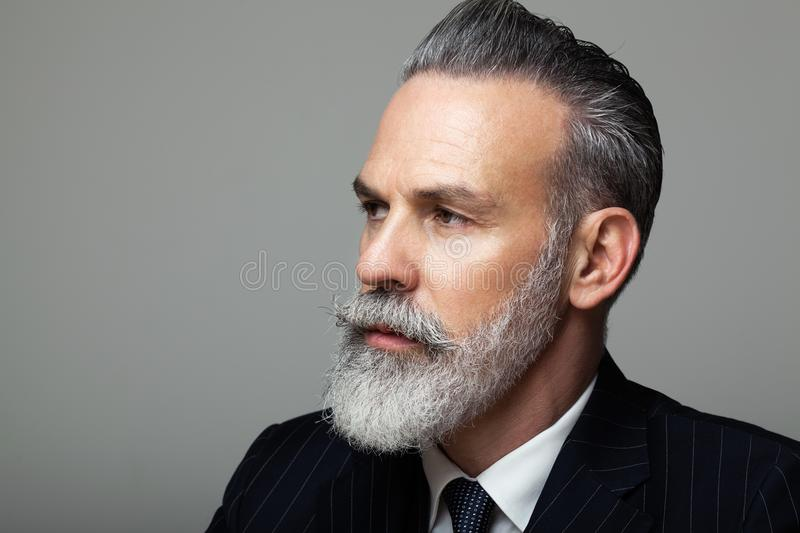 Close-up portrait of bearded gentleman wearing trendy suit over empty gray background. Fashion concept. royalty free stock images