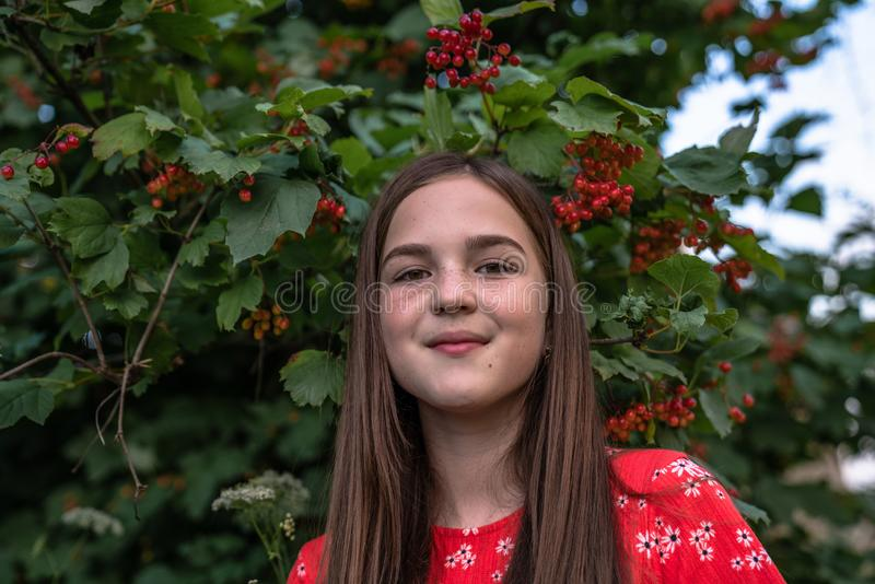 Close up portrait of beautiful teen girl with red hair and freckles standing in front of the bush of viburnum and stock photography