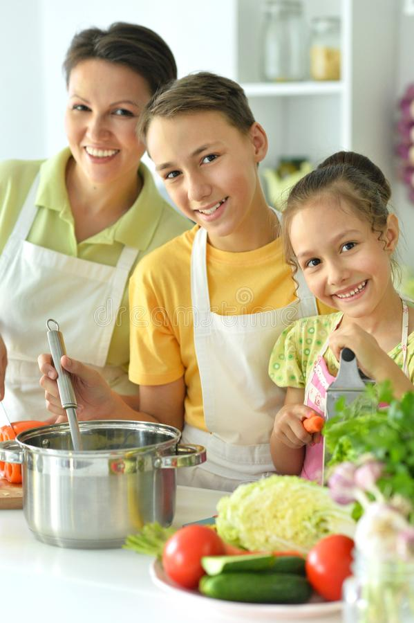 Close up portrait of brother and sister cooking salad together in kitchen royalty free stock photos