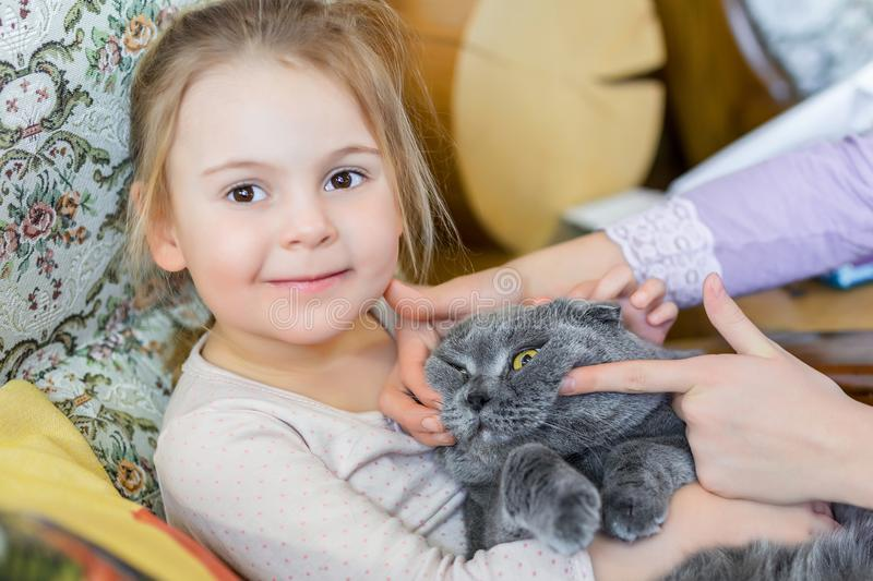 Close-up portrait of cat being hugged by child. Pet with strained smile . Kitten patience. Best friends. Pet care.  stock image