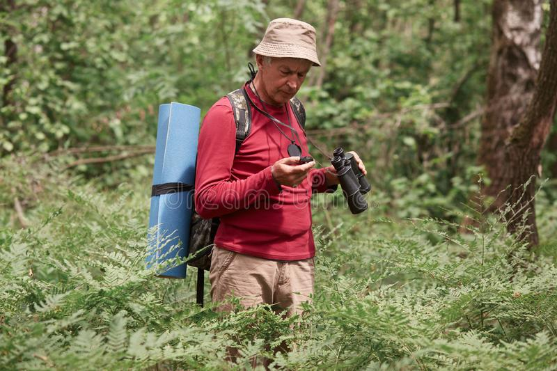 Close up portrait of concentrated eldery male wearing red casual sweater, pants and cap, standing in forest with compass and royalty free stock images